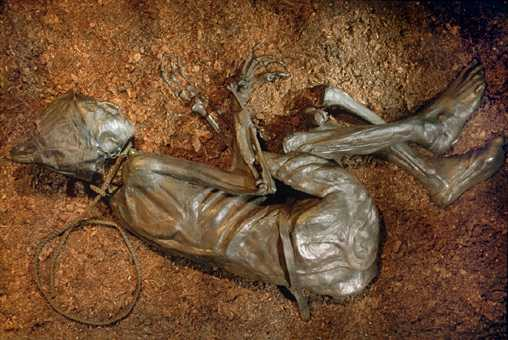 the bog bodies and what they Meet our iron age bog bodies  200 bc and they were in a remarkably good state of preservation the bog bodies research project scientifically examined.