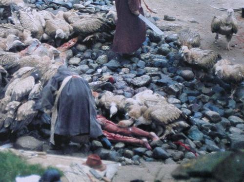 Tibetmuertosbuitresdetalle.Jpg