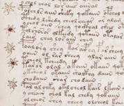 Voynich Manuscript Recipe Example 107R Crop
