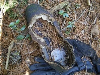 Aokigahara Suicide Forest 10
