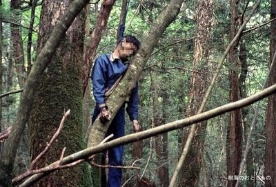Aokigahara Suicide Forest 12