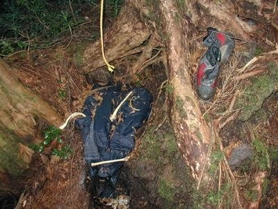Aokigahara Suicide Forest 7